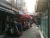 Şangay Pet Shop Çarşısı