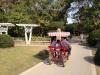 Şanghay Botanik Bahçesi
