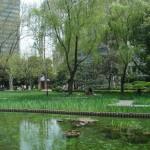 Şanghay Jingan Park