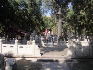 Dai Tapınağı